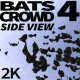 Bats Crowd 4 - VideoHive Item for Sale