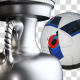 Euro 2016 Trophy & Ball Pack - VideoHive Item for Sale