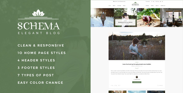 Schema Elegant Responsive WordPress Blog Theme