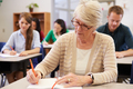 Senior woman studying at an adult education class - PhotoDune Item for Sale