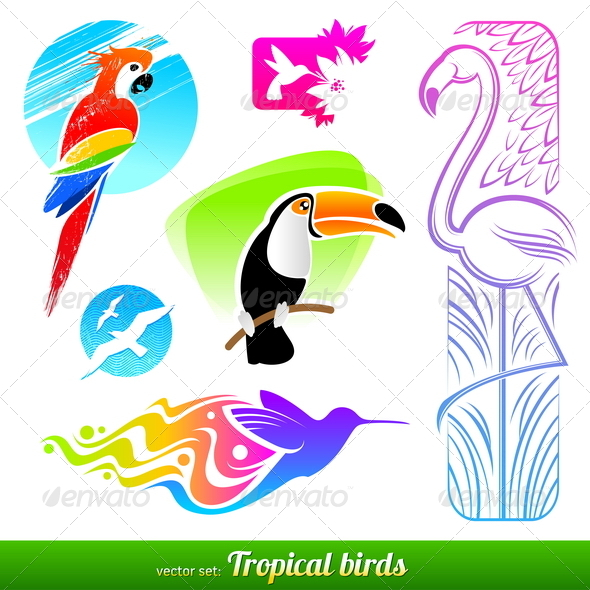 Set of Tropical Birds - Animals Characters