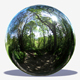 Undercover Trees HDRI - 3DOcean Item for Sale