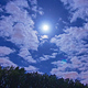 Full Moon Rises Above Trees on Starry Night Sky - VideoHive Item for Sale