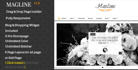 Magline - Magazine, Bloging WordPress Theme