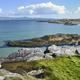 Download Ireland coastline landscape from PhotoDune