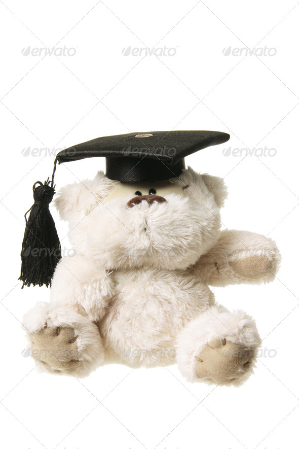 Soft Toy Graduation Bear - Stock Photo - Images