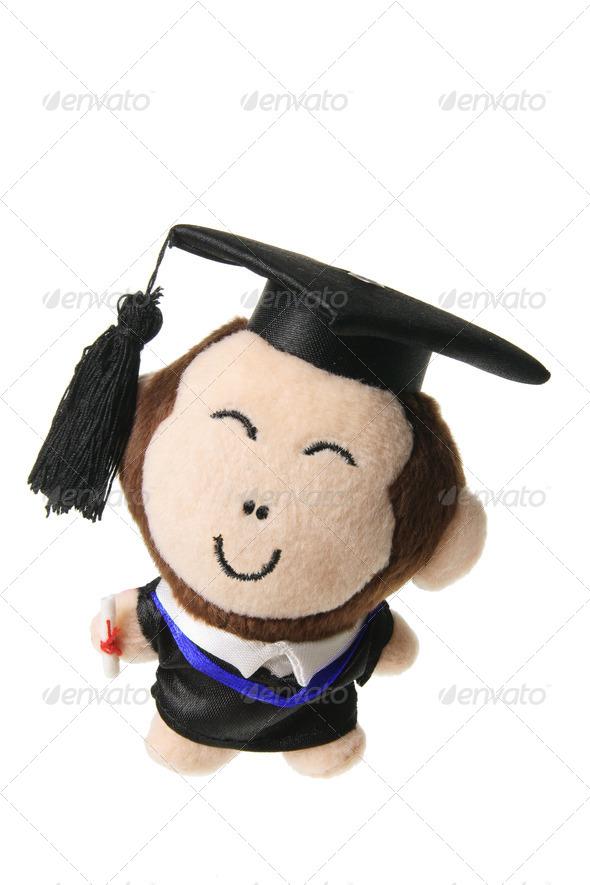 Soft Toy Graduation Monkey - Stock Photo - Images