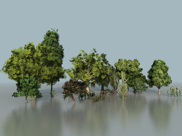 Cinema 4d Vray 21 low poly trees with realistic animation  - 3DOcean Item for Sale