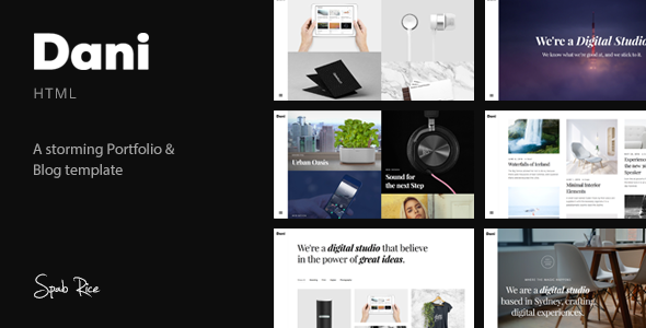 Dani – A Storming Portfolio & Blog template