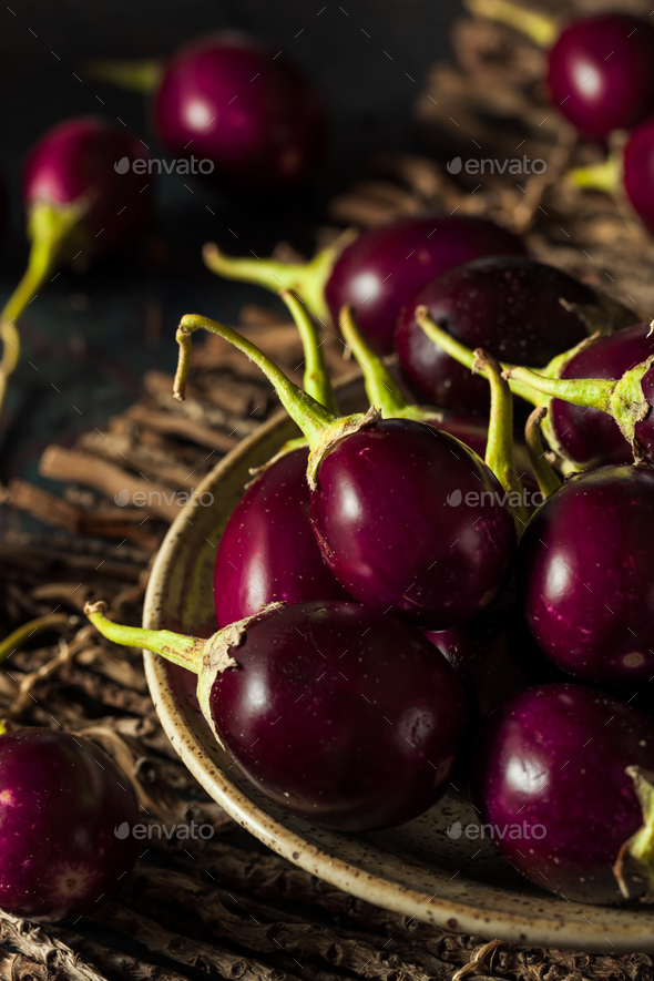 Organic Raw Baby Indian Eggplants - Stock Photo - Images