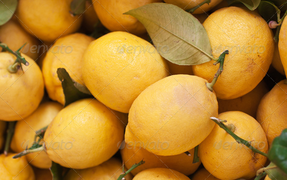 Fresh organic lemons on display at an Italian farmers' market - Stock Photo - Images