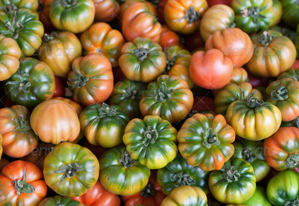 Fresh Italian Costoluto tomatoes on display at an outdoors farme - Stock Photo - Images