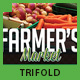 Farmer's Market Commerce Trifold - GraphicRiver Item for Sale