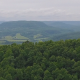 Aerial of Green Rolling Hills Reveal - VideoHive Item for Sale