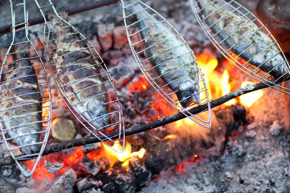 Grilling fish on campfire - Stock Photo - Images