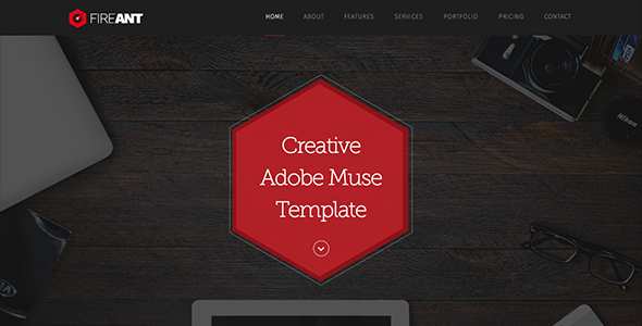 Fireant - Creative One Page Muse Template