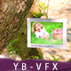 Spring Natural Gallery - VideoHive Item for Sale