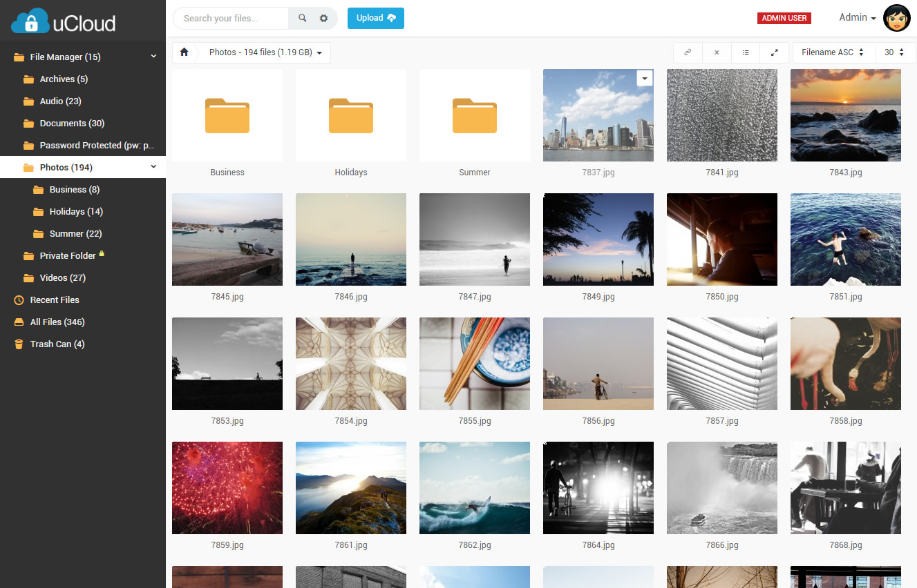 Image result for wordpress File Hosting