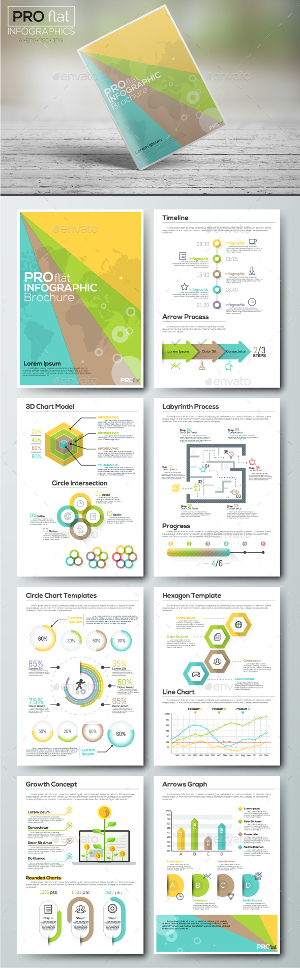 Pro Flat Infographic Brochure. Set 5 - Infographics
