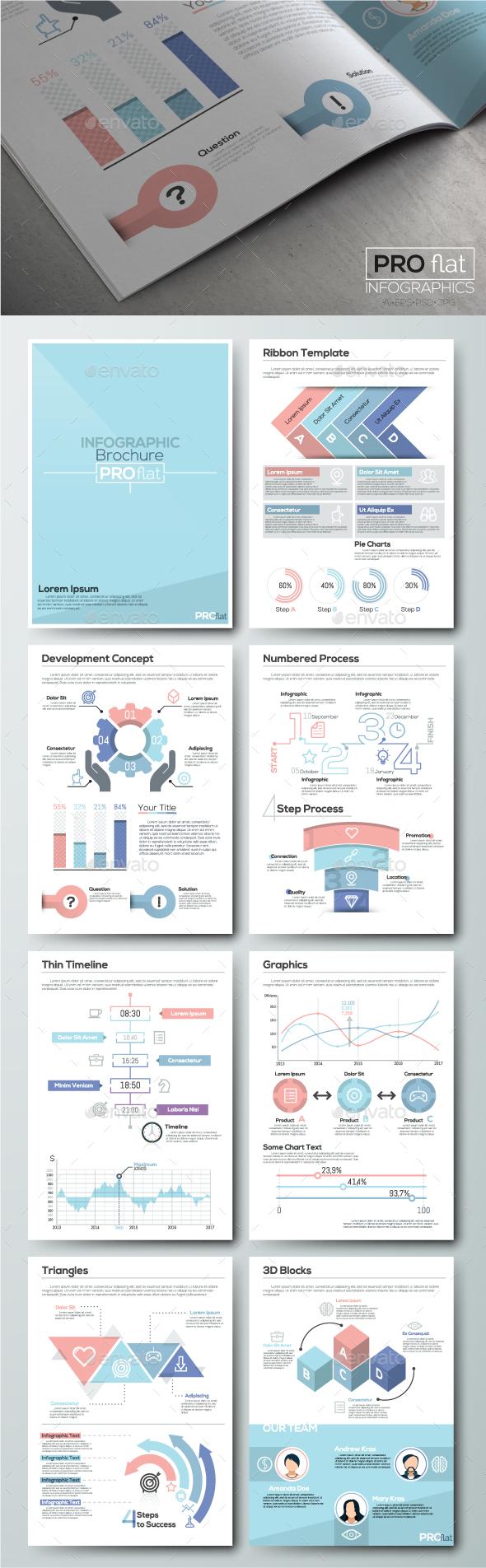 Pro Flat Infographic Brochure. Set 6 - Infographics