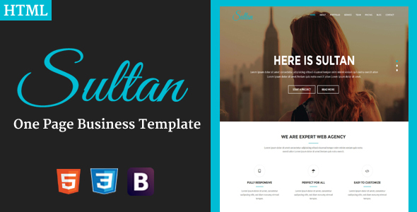 Sultan - One Page Business Template - Technology Site Templates