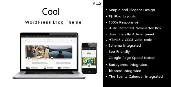 Cool – Responsive WordPress Blog theme