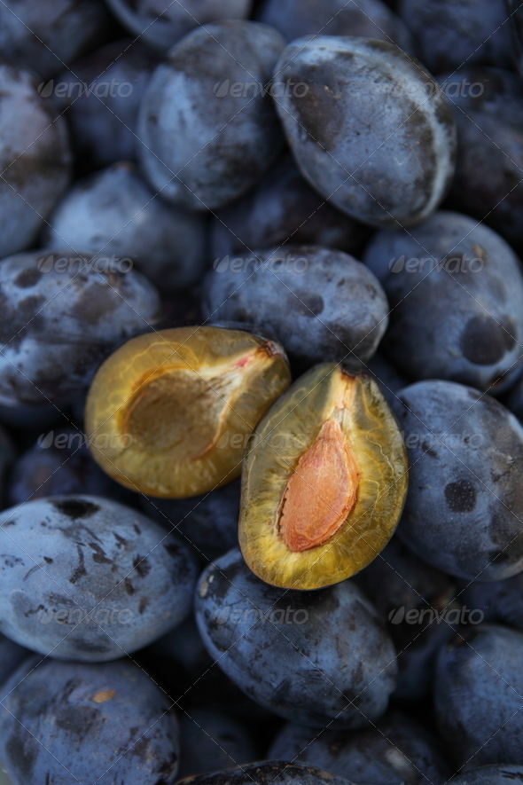 Plums - tasty and healthy plums straight from the garden - Stock Photo - Images