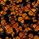 The Group of Butterflies - VideoHive Item for Sale
