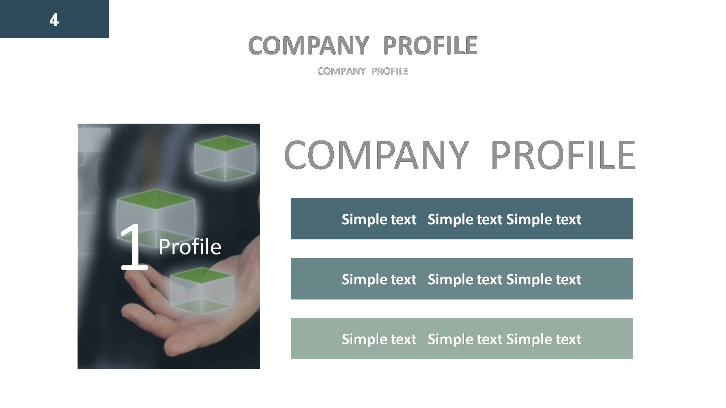 Company profile Google Slides Presentation Template by GardeniaDesign – Company Profile