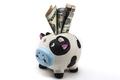 Dollar In Bank - PhotoDune Item for Sale