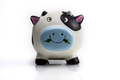 Reflection Of Piggy Bank - PhotoDune Item for Sale