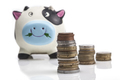 Coins In Front Of Piggy Bank - PhotoDune Item for Sale