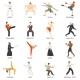 Martial Arts Decorative Flat Icons Set