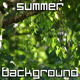 Summer Nature Background - VideoHive Item for Sale