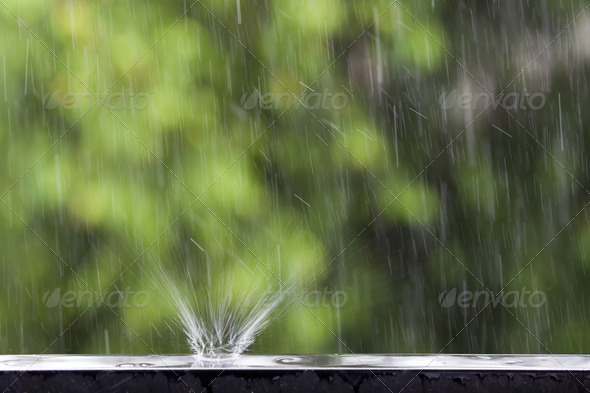 rain - Stock Photo - Images