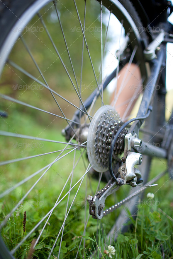 biking - rear wheel of a young woman's mountain bike on a green - Stock Photo - Images