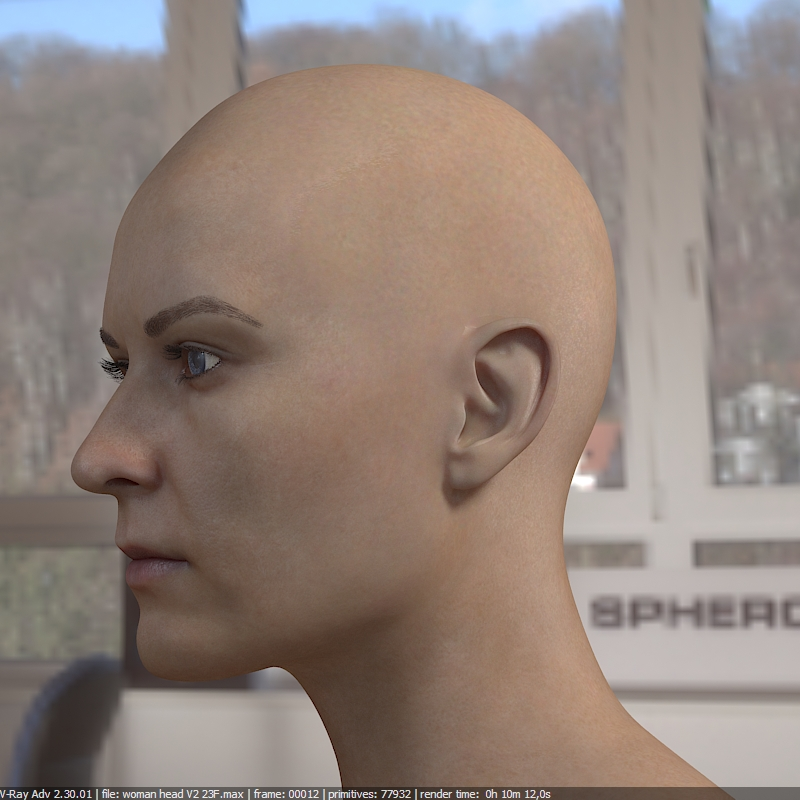 3d model woman head photorealistic female by vefilanna   3DOcean
