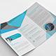 Pro Tri fold Brochure - GraphicRiver Item for Sale