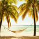Hammock between two palm trees on the beach during sunset, cross - PhotoDune Item for Sale