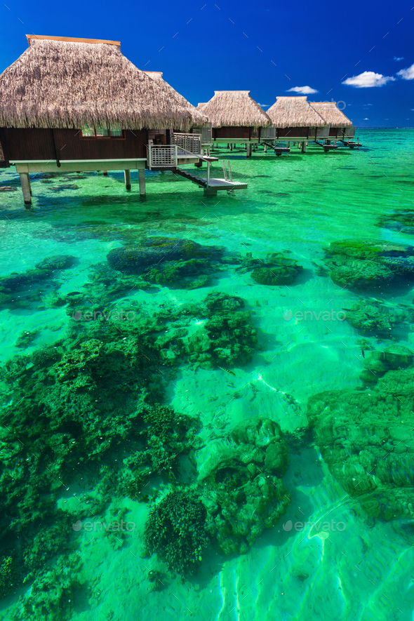 Water villas on the tropical reef, the best island holidays - Stock Photo - Images