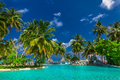 Large infinity swimming pool on the beach with palm trees and um - PhotoDune Item for Sale