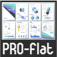Pro Flat Infographic Brochure. Set 8 - GraphicRiver Item for Sale