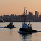 Boats Pass Near the City at Sunrise - VideoHive Item for Sale