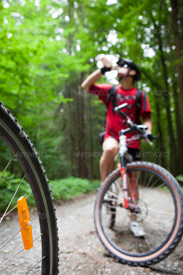 Mountain biking in a forest - bikers on a forest biking trail (s - Stock Photo - Images