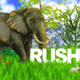 Graphic Jungle - VideoHive Item for Sale