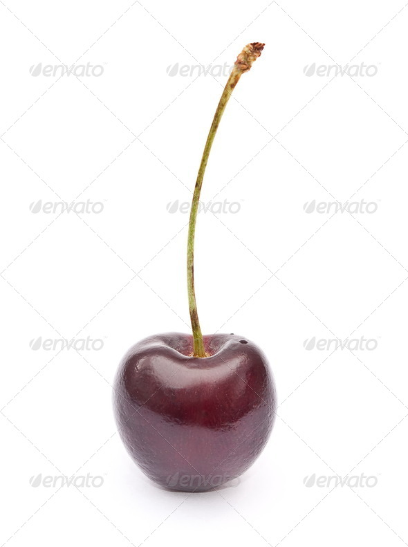 Sweet cherry - Stock Photo - Images
