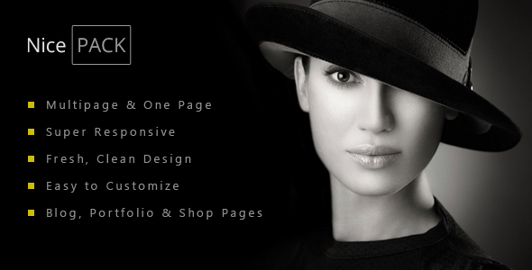 NicePACK – Multipurpose Multi / One Page Template