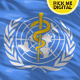 World Health Organization(WHO) Flag 4K - VideoHive Item for Sale