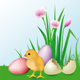 Newly Hatched Chick & easter eggs - GraphicRiver Item for Sale