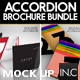 Accordion Brochure/Flyer Mock Up Bundle - GraphicRiver Item for Sale